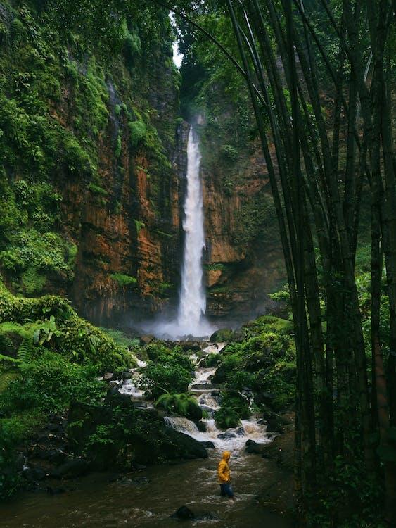 Cascada Rápida En Montañas Verdes Cerca Del Río