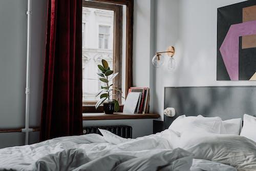 インテリア, コットン, スウィートホーム, ベッドの無料の写真素材