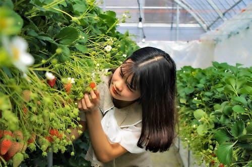Girl in White Shirt Holding Red Fruit