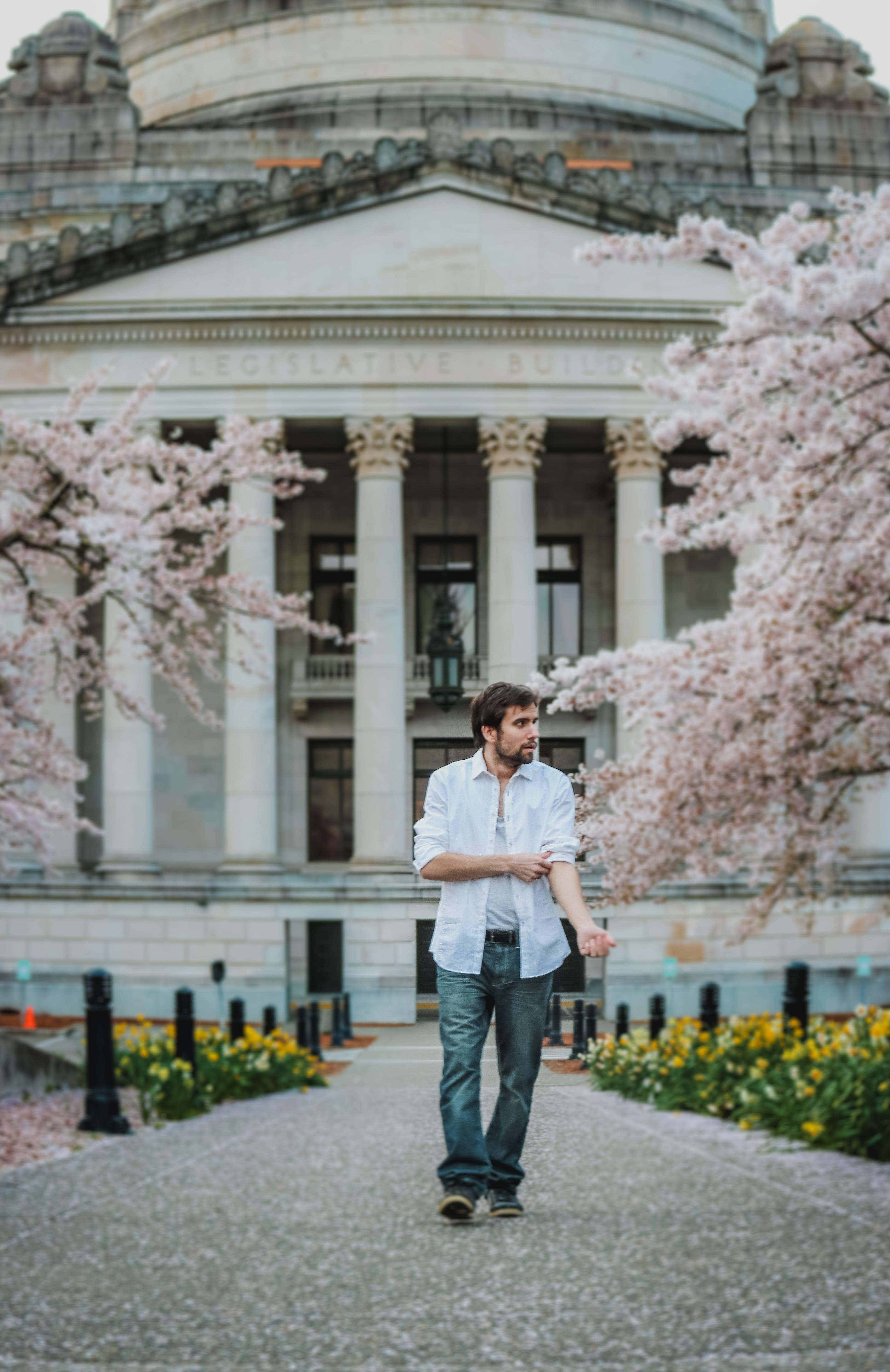 Fotos de stock gratuitas de adulto, arboles, arquitectura, blanco
