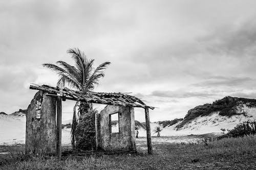 Imagine de stoc gratuită din abandonat, alb-negru, arruinado, arte