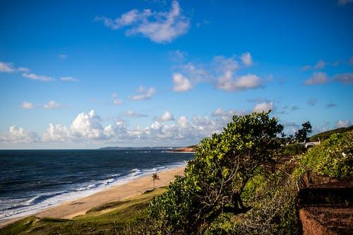 Imagine de stoc gratuită din de frente pentru praia, Pexels, pexels meetup, pexelschegou