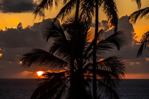Imagine de stoc gratuită din amanhecer, amanhecer ao entardecer, ascensão do sol, brilho do sol