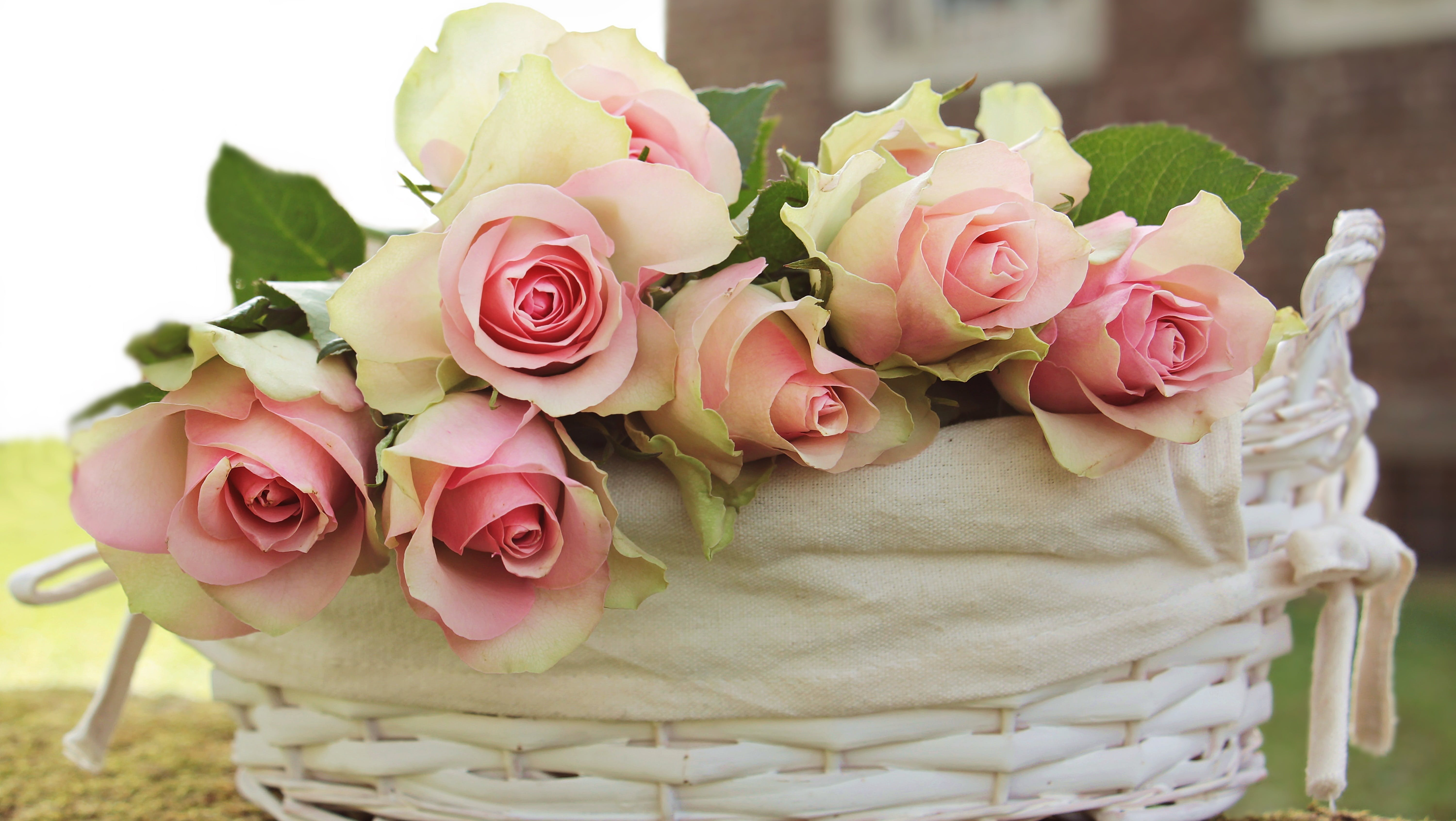 Pink and Beige Roses in White Basket