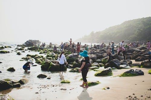 Gratis lagerfoto af bølger, børn, da nang, familie