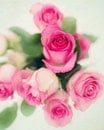 love, romantic, flowers