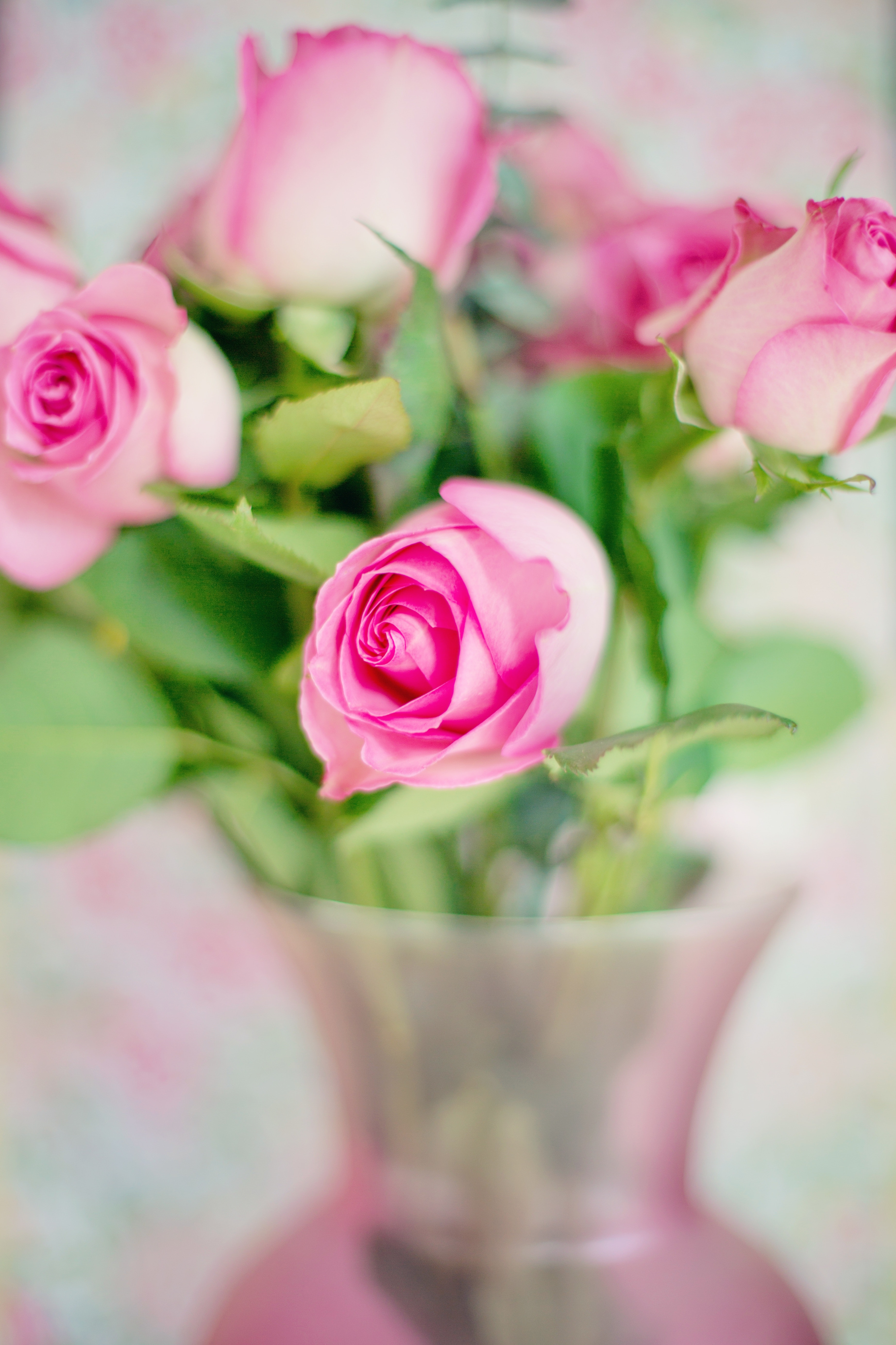 1000 interesting flower vase photos pexels free stock photos pink flowers with green leaves fetching more photos mightylinksfo