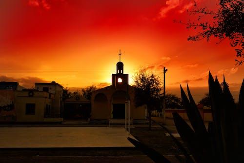Fotos de stock gratuitas de amanecer, árbol, arquitectura, calle