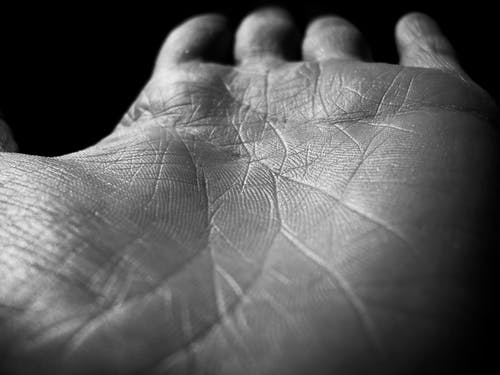 Free stock photo of black and white, finger prints, hand, palm