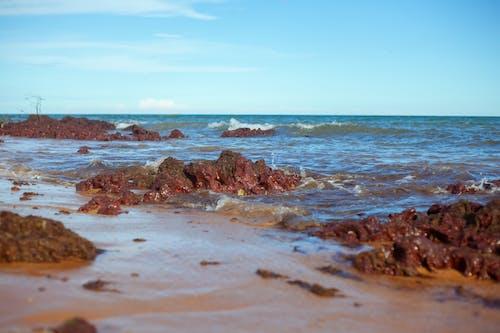 Ingyenes stockfotó óceán, strand témában