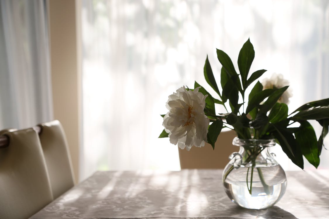 White Flowers in Clear Glass Vase on Table