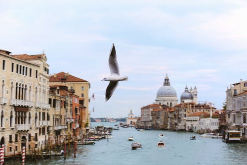 A View Of Venice Canal