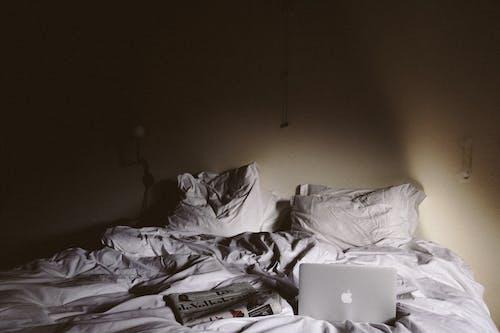 人, 光, 光線 的 免費圖庫相片