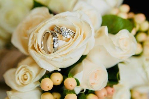 Fotobanka sbezplatnými fotkami na tému kytica, obrúčky, snubné prstene, svadobná kytica