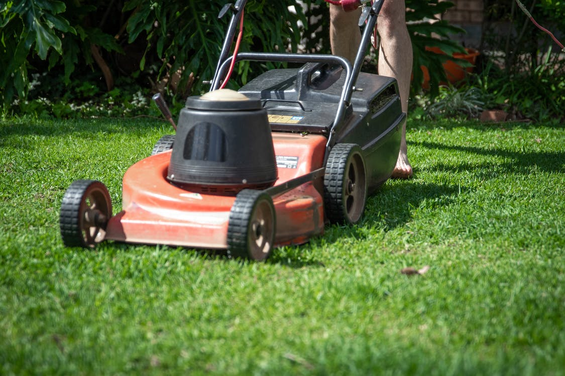 Red and Black Push Lawn Mower on Green Grass Field