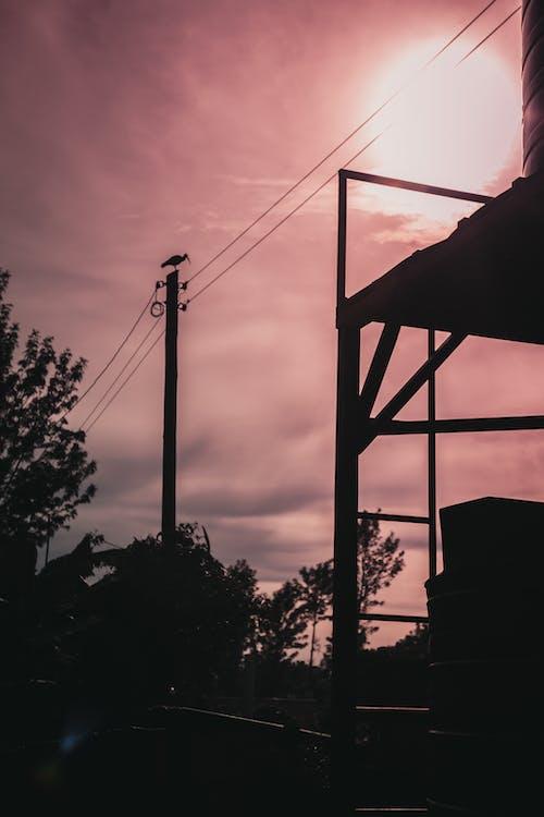 Foto d'estoc gratuïta de a l'aire lliure, alba, boira, capvespre