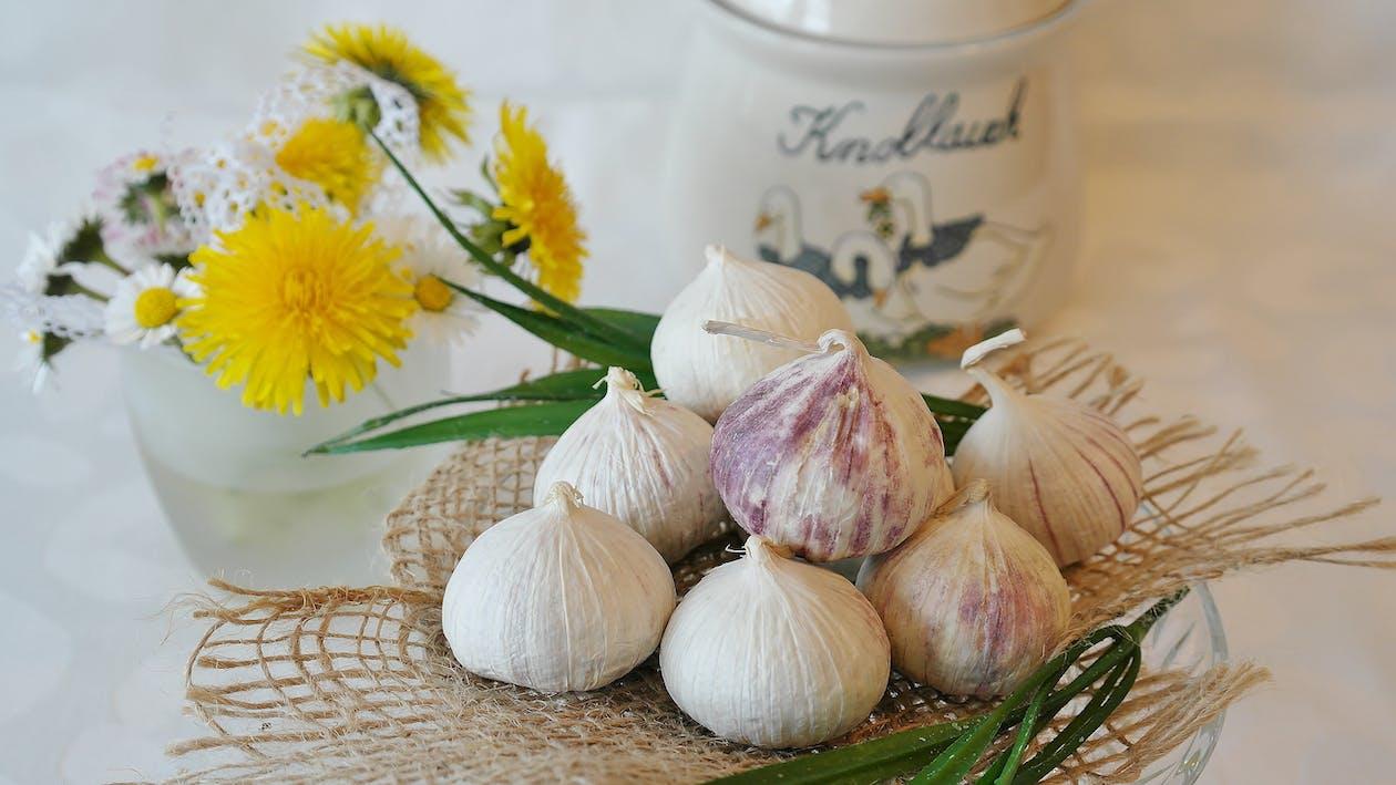 Garlics Beside Yellow Flowers and White Jar