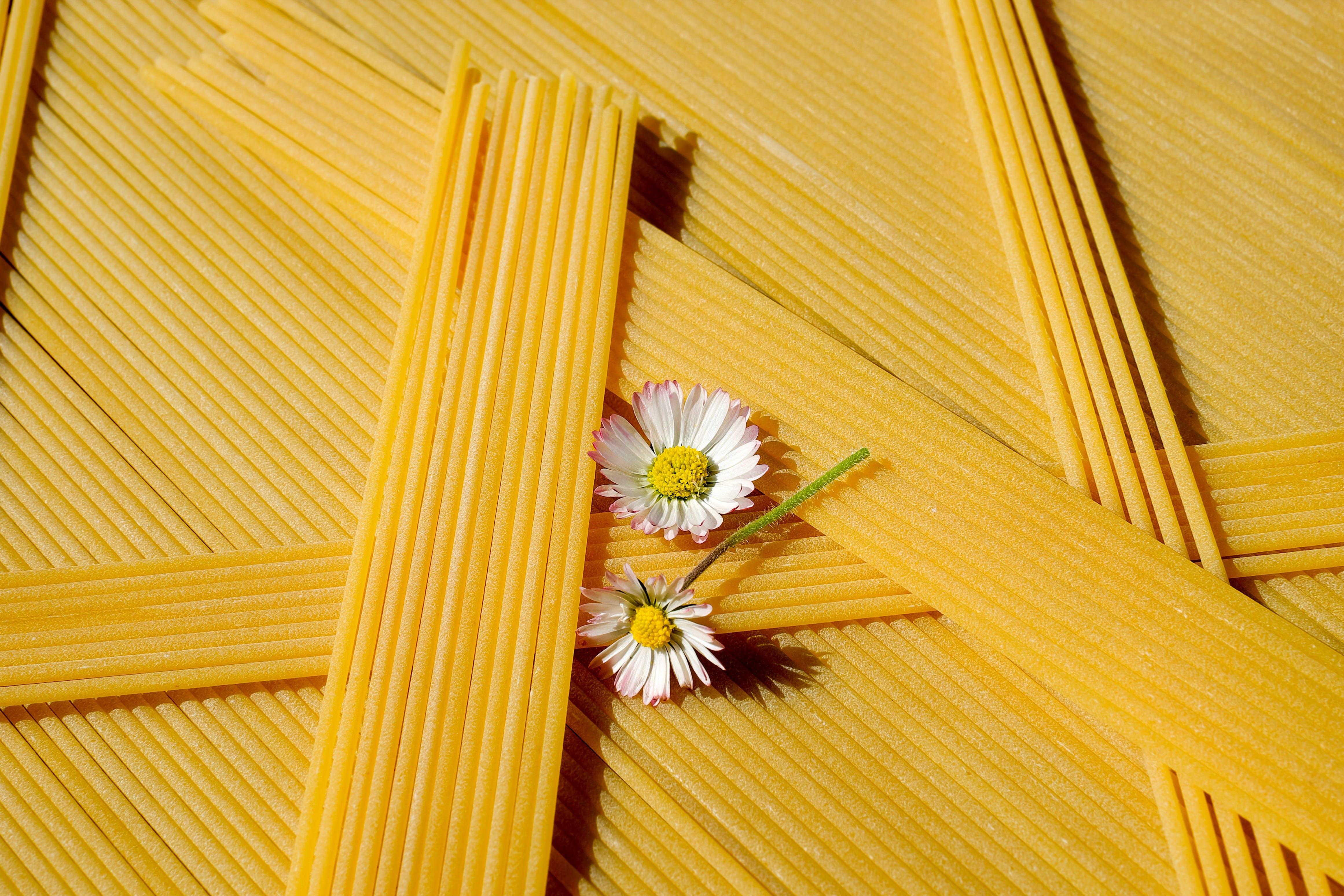 Free stock photo of food, italian, yellow, pasta