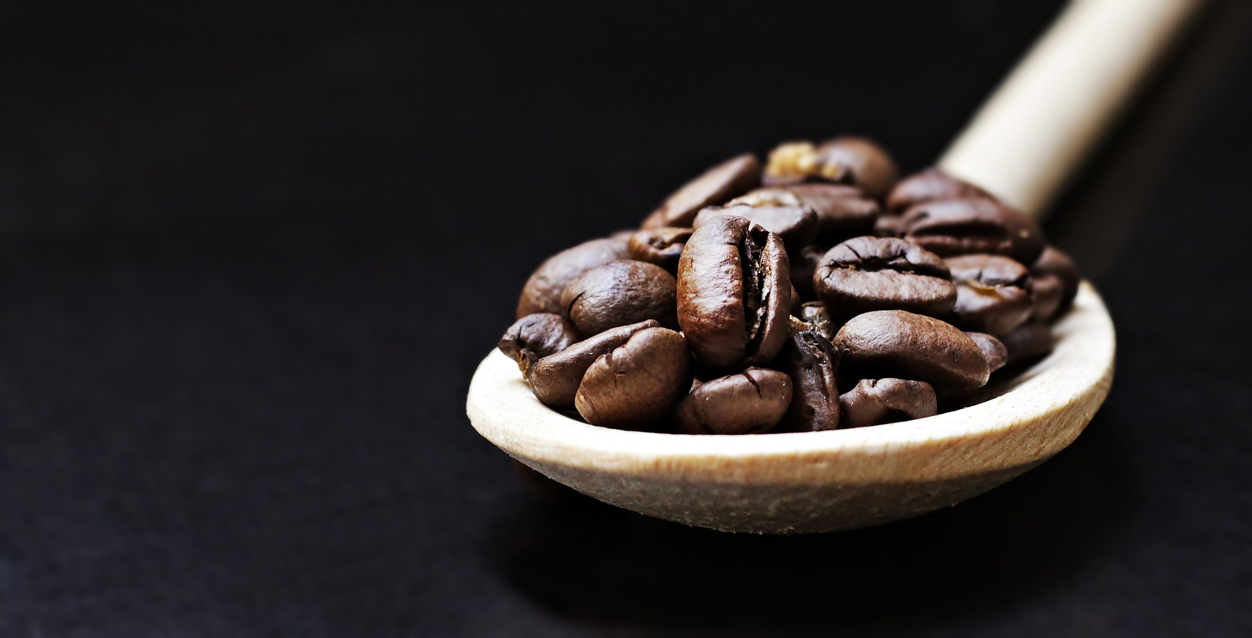 Free stock photo of beans, caffeine, coffee, close-up