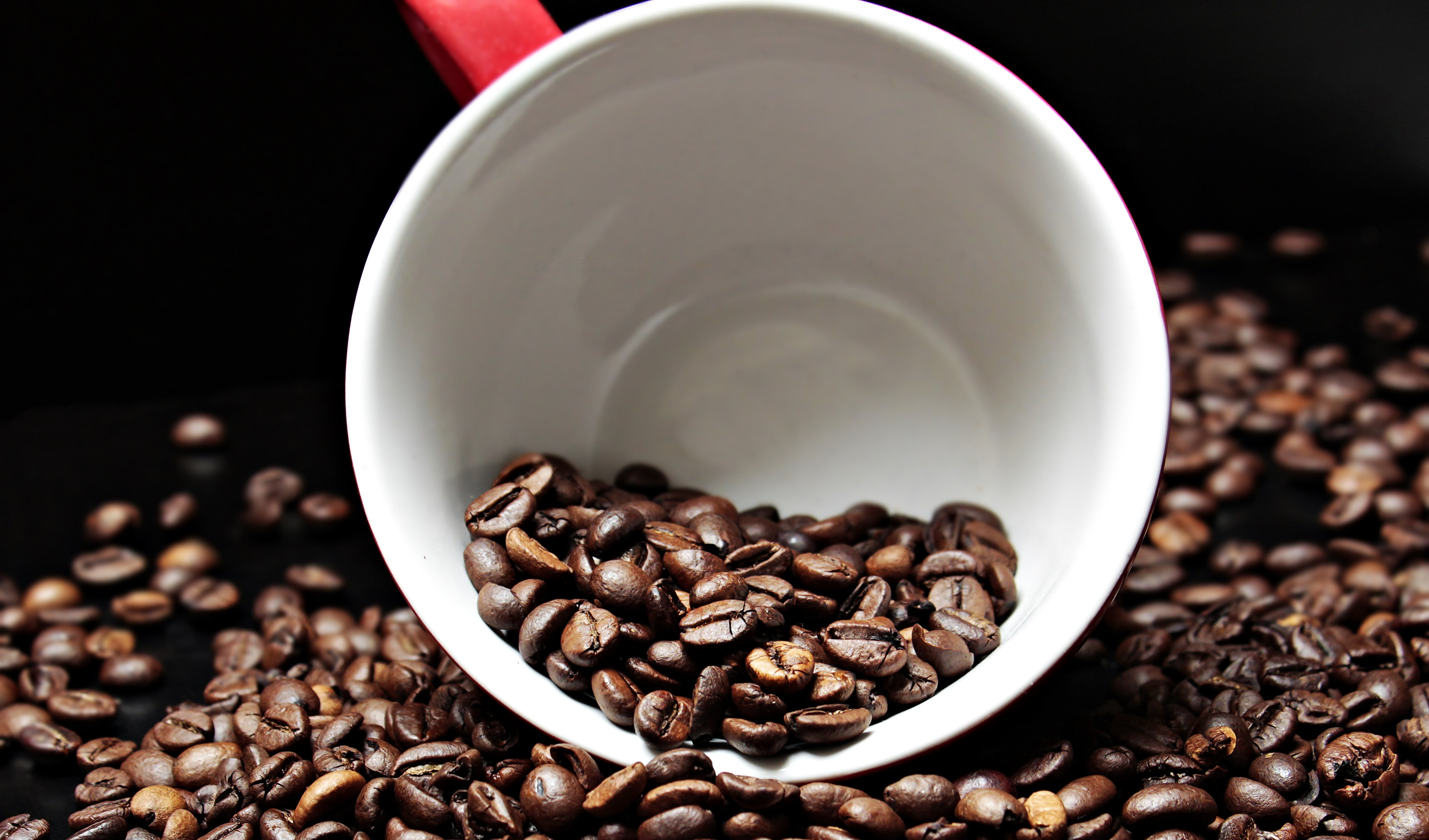 Free stock photo of beans, cup, dark, blur