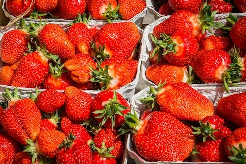 Kostenloses Stock Foto zu beeren, diät, erdbeeren, ernährung