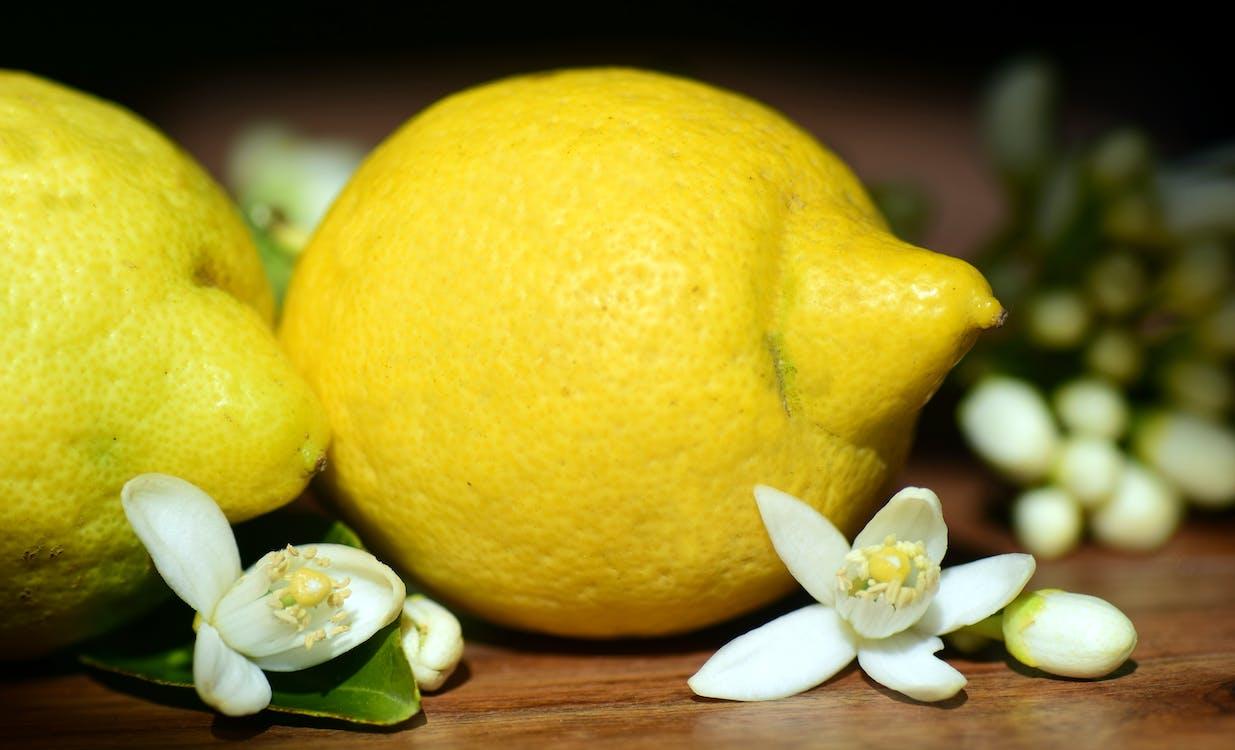 Gratis lagerfoto af blomst, c-vitamin, citronblomst