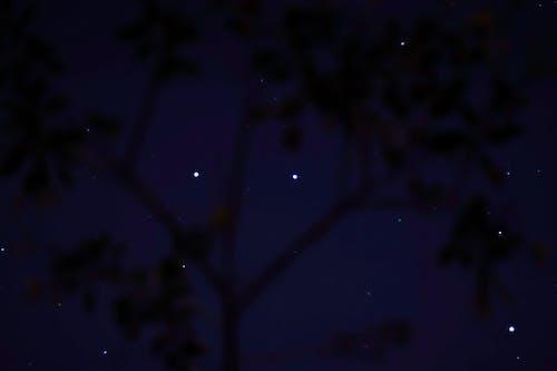 Free stock photo of céu, escuro, estrelas, formas
