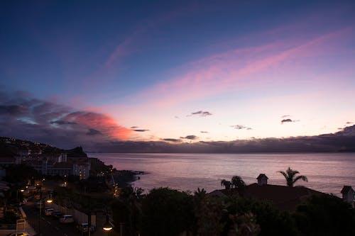 Gratis stockfoto met avond, avondlucht, bomen, Caraïben