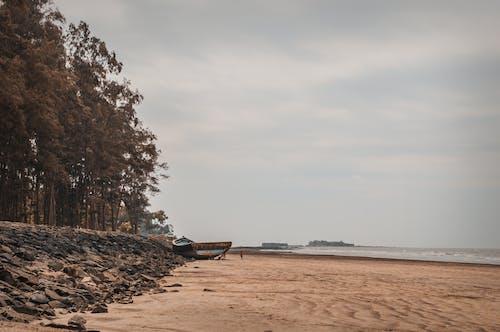 cezir, deniz, denizin alçalması, kum içeren Ücretsiz stok fotoğraf