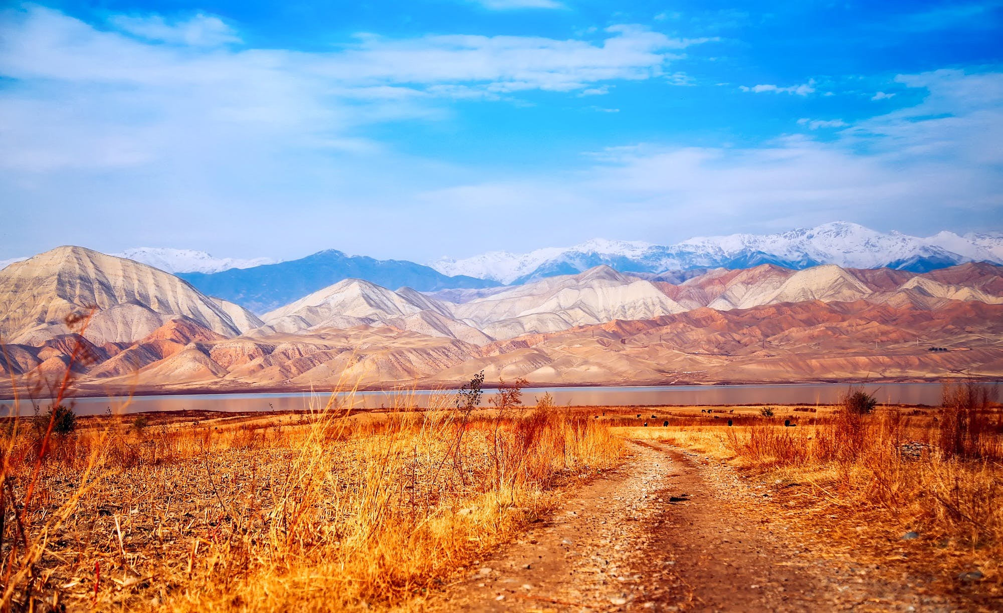 Free stock photo of clouds, country, dirt road, kyrgyzstan