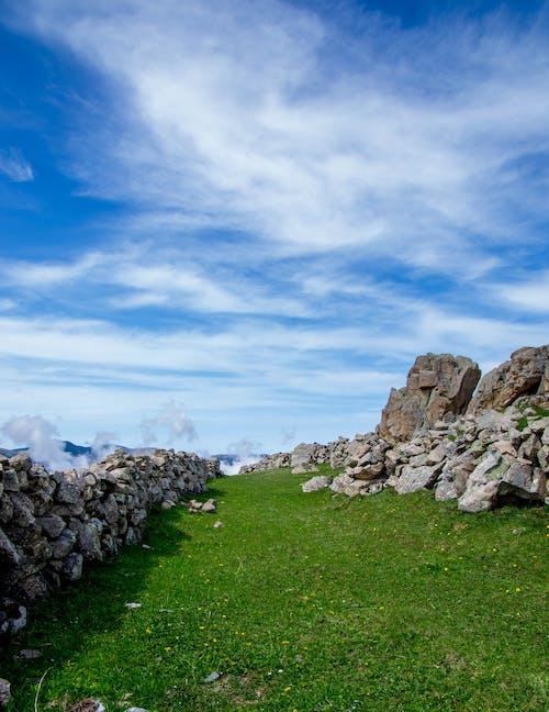Foto profissional grátis de cenário, cênico, céu, ecológico