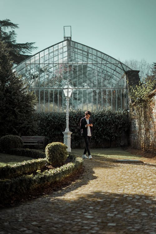 Anonymous man standing near orangery and shrubs in city park