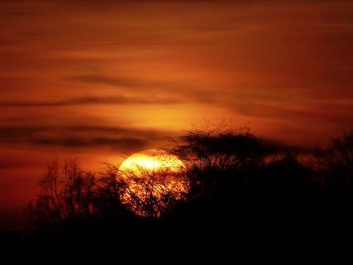 Základová fotografie zdarma na téma mraky, obloha, tmavý, západ slunce