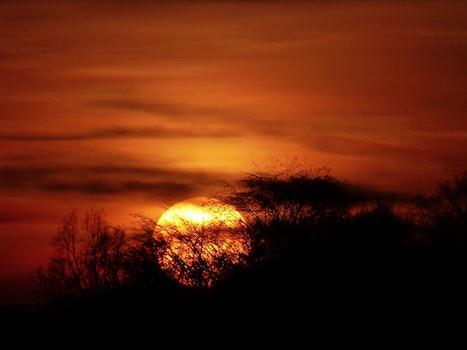 Free stock photo of sky, sunset, clouds, dark