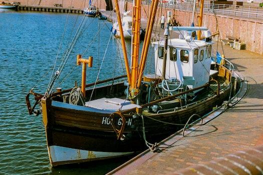 Free stock photo of wood, fishing, sea, water
