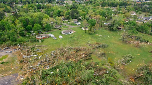 Drone view of uprooted trees heaped on green meadow in small village after massive storm