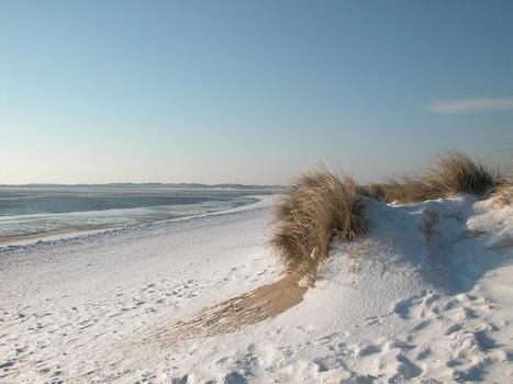 Free stock photo of beach, sun, winter, germany
