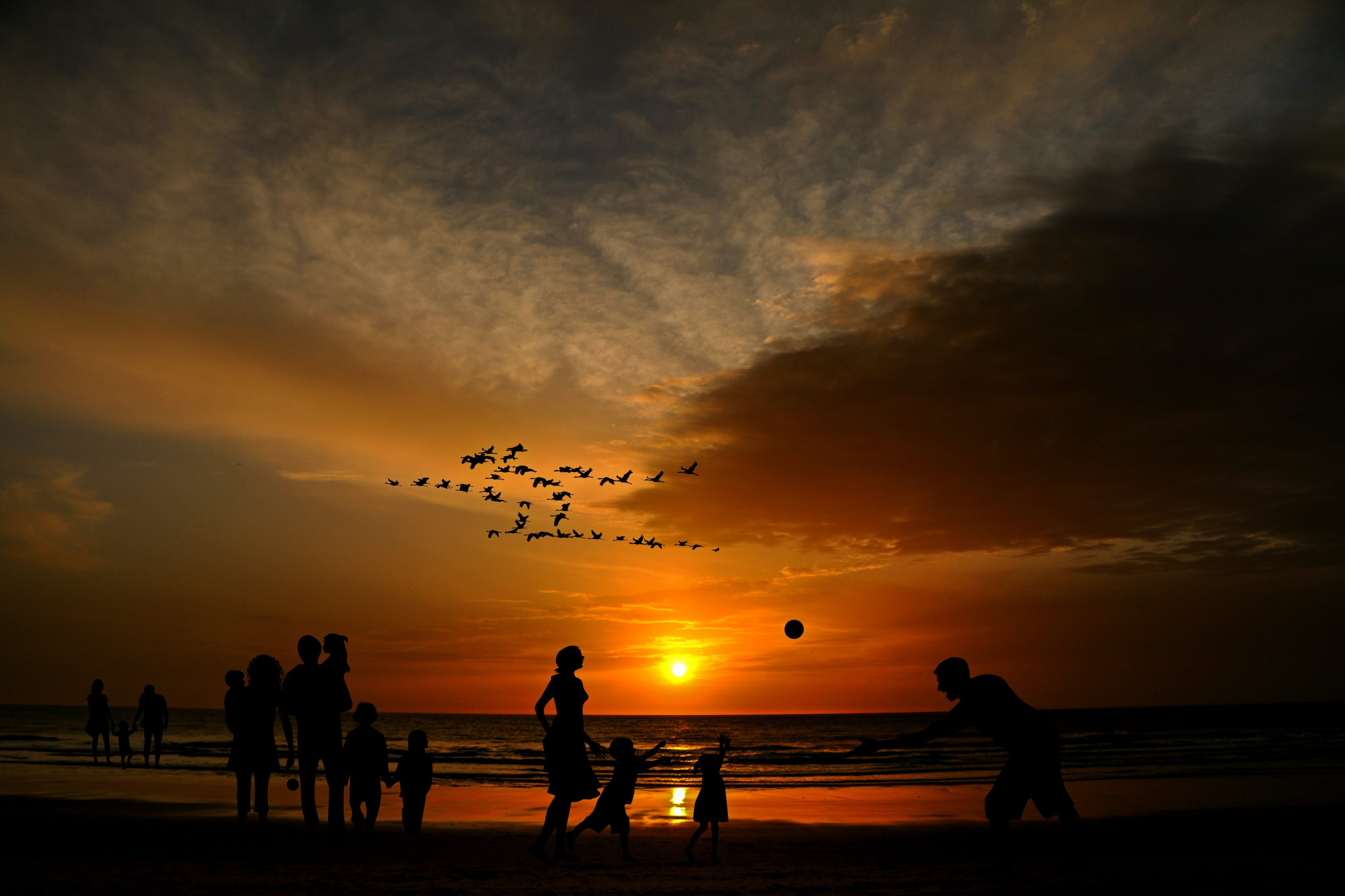 Silhouette of Group of People Playing at Beach Shore