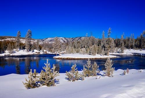 Fotobanka sbezplatnými fotkami na tému cestovný ruch, chladný, denné svetlo, divá príroda