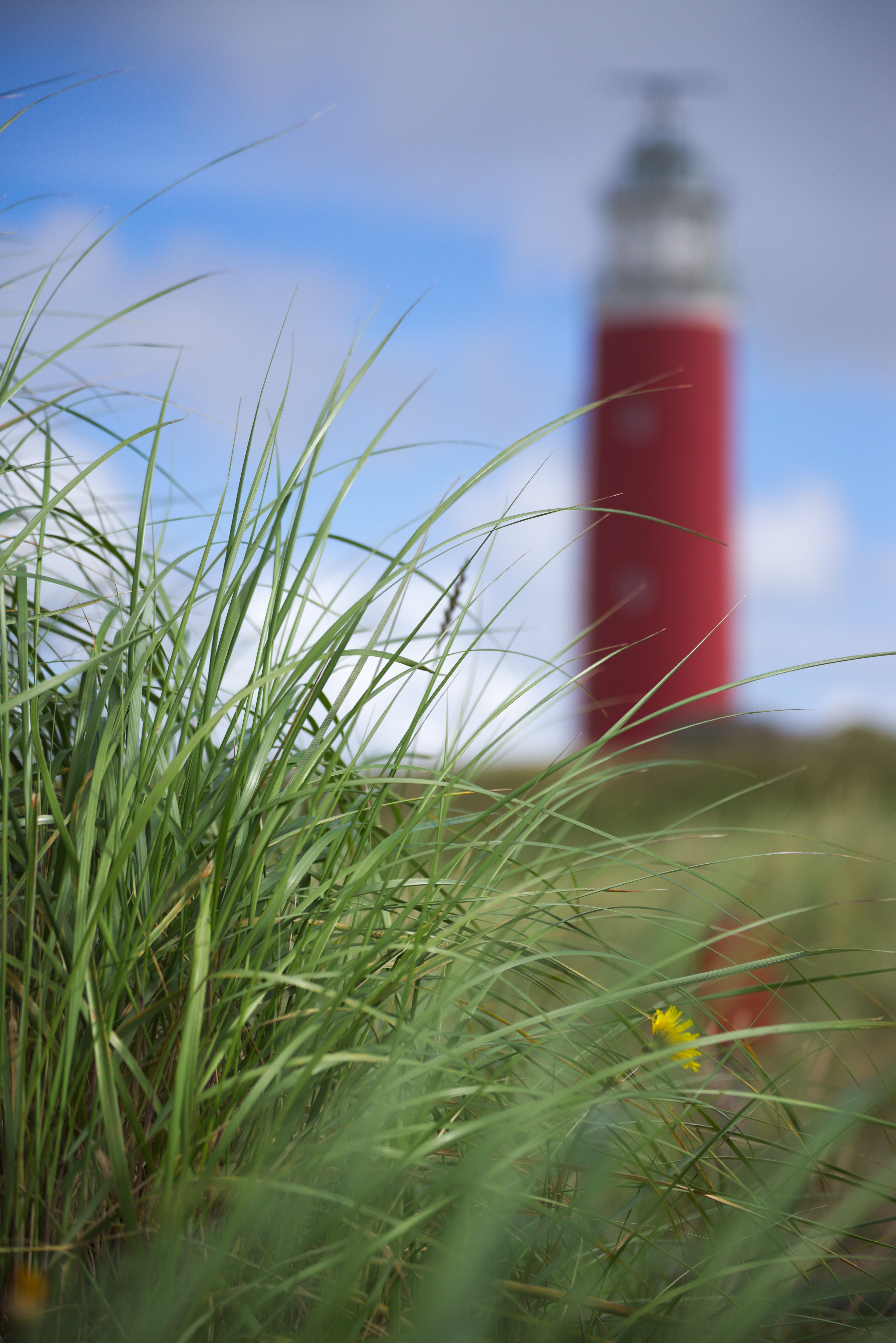 Free stock photo of summer, grass, lighthouse, tourism
