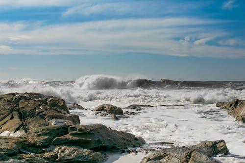 Photograph of Seashore