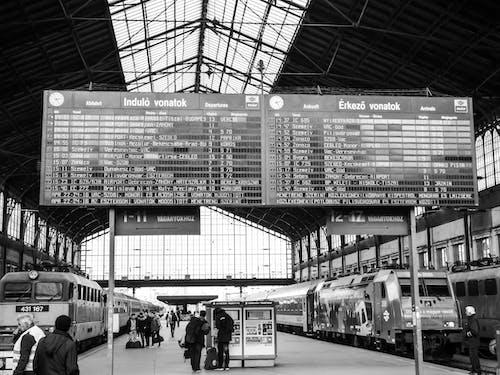 Foto d'estoc gratuïta de andana, blanc i negre, calendari, ciutat