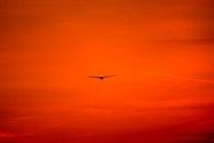 flight, landscape, nature