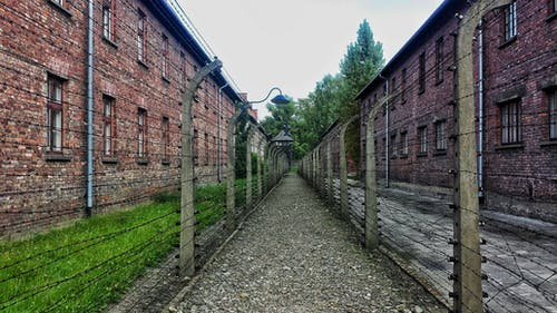 คลังภาพถ่ายฟรี ของ auschwitz, กั้นรั้ว, กำแพงอิฐ, ค่าย