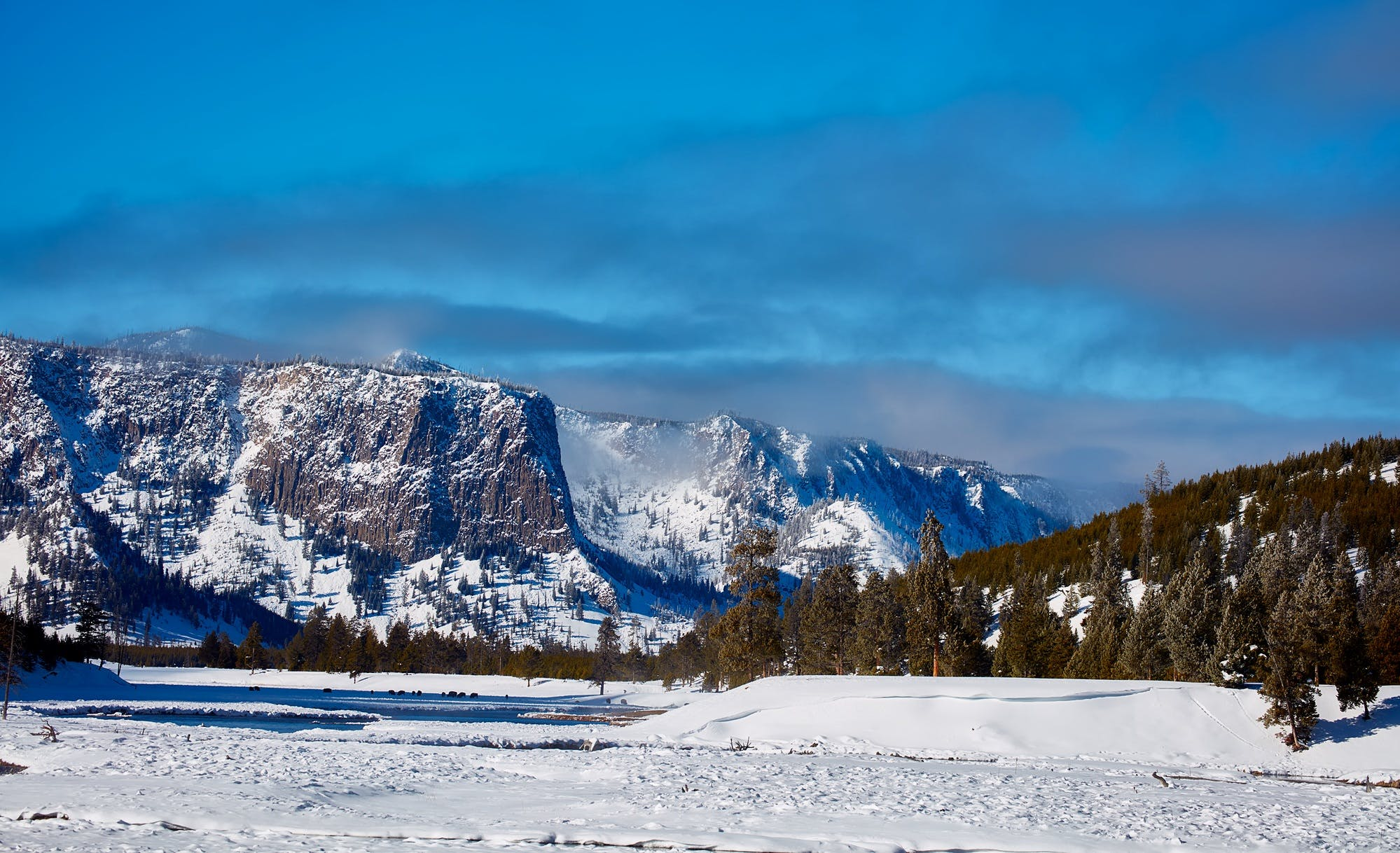 Photography of Mountains Near Woods during Winter