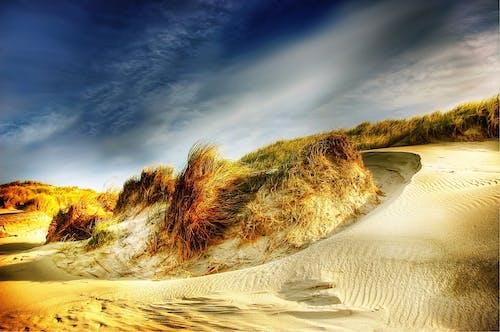 Ảnh lưu trữ miễn phí về bầu trời, cát, cỏ, cồn cát