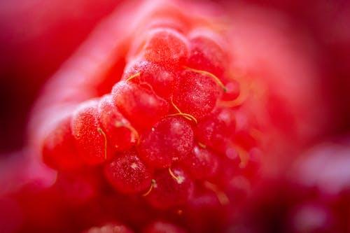 Kostnadsfri bild av abstrakt, bär, ett makrofoto av hallon., frukt