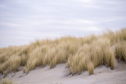 Free stock photo of landscape, nature, sand, clouds
