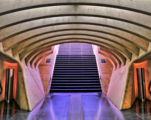 Gratis lagerfoto af arkitektur, bygning, design, indendørs