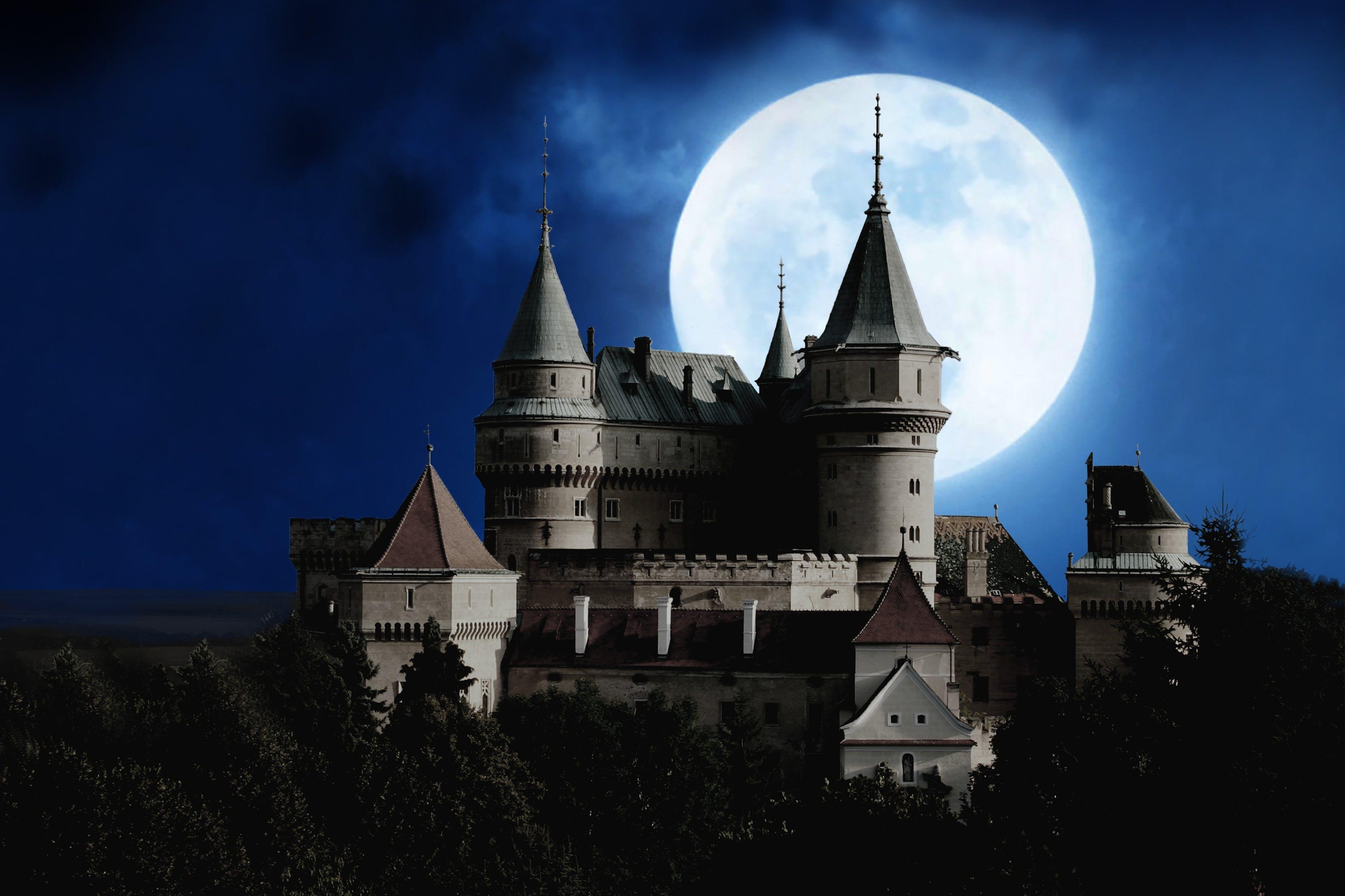 Gray Concrete Castle